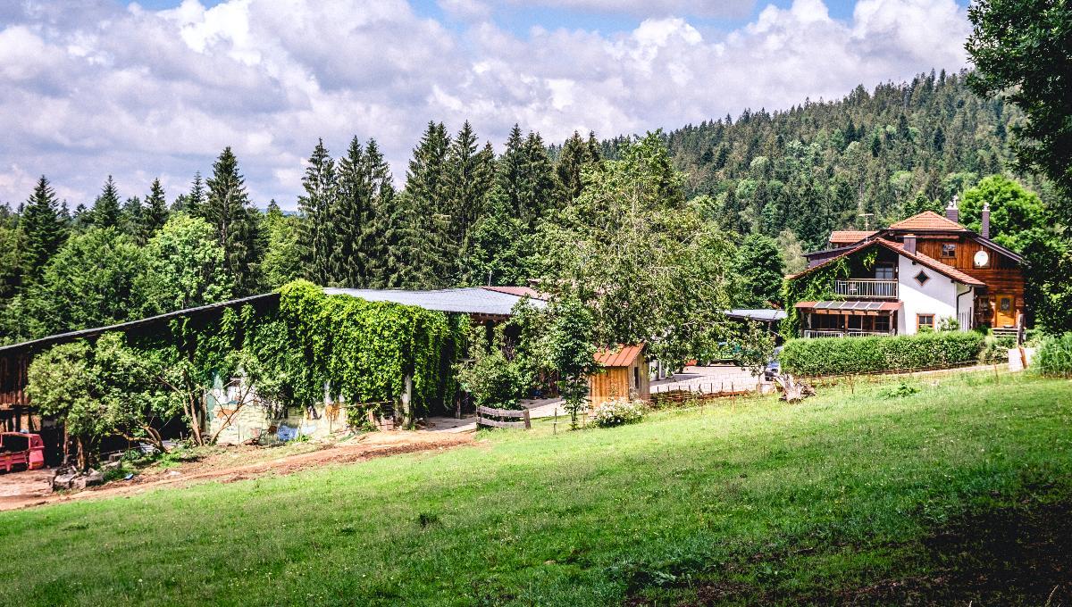 Naturland-Hof Sitter