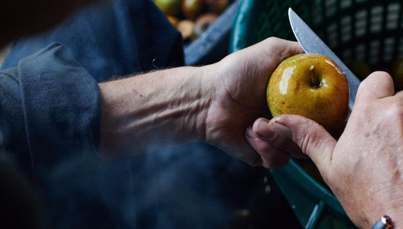 Apfelbrand Holzausbau