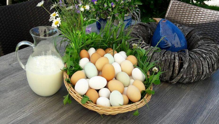 Eier vom Biohof Pfell