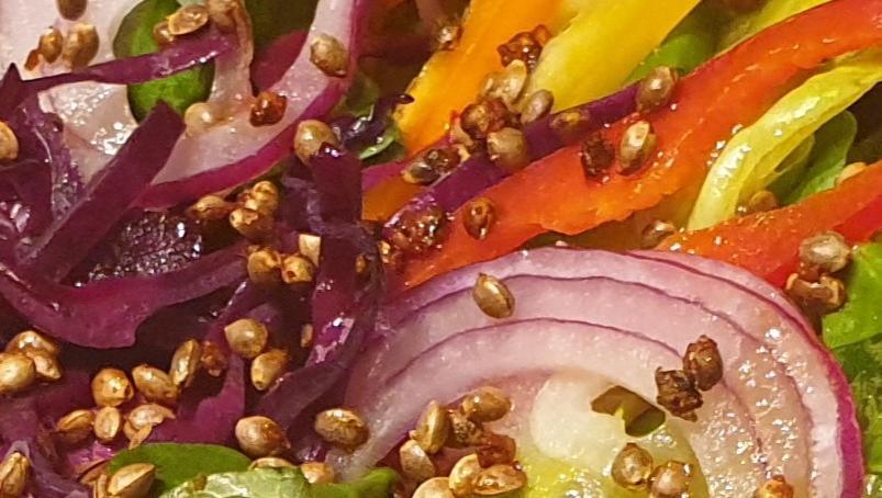 bio Knusperhanf geröstet mit Paprika Kurkuma