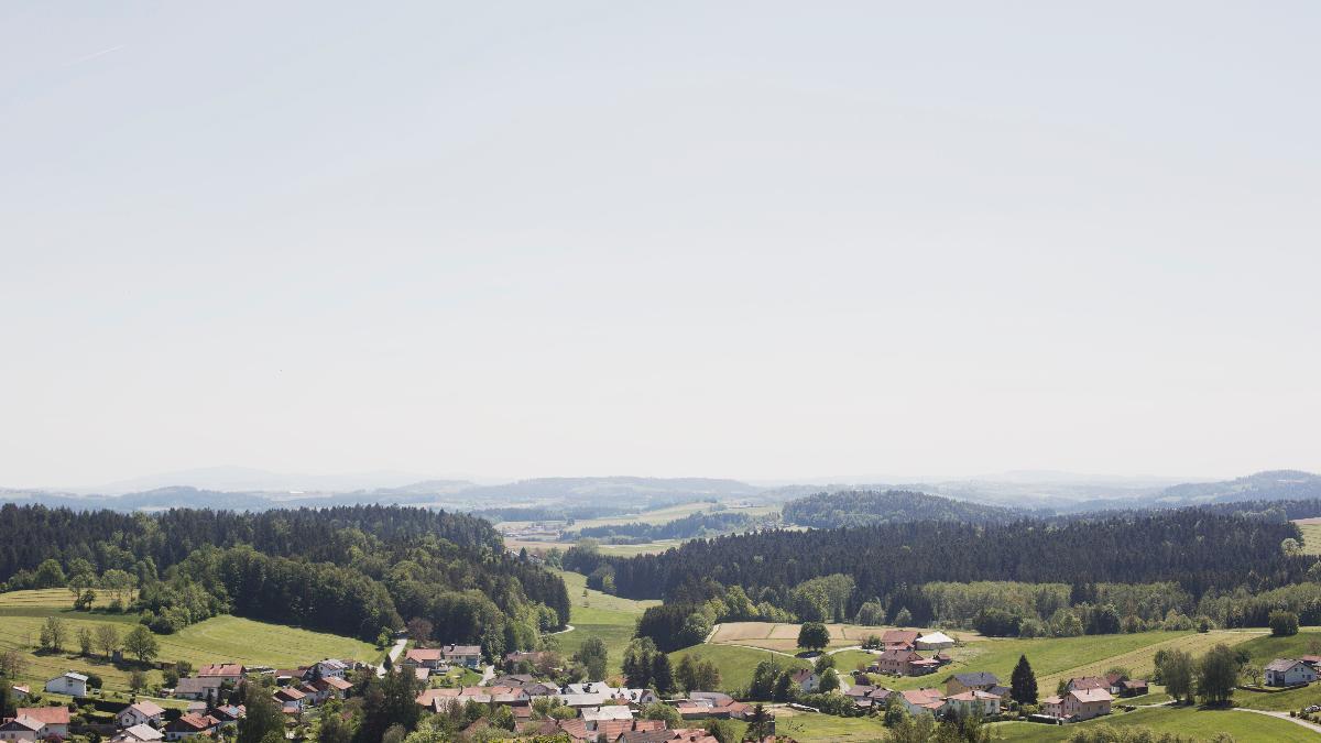 Wirtshaus Hafner