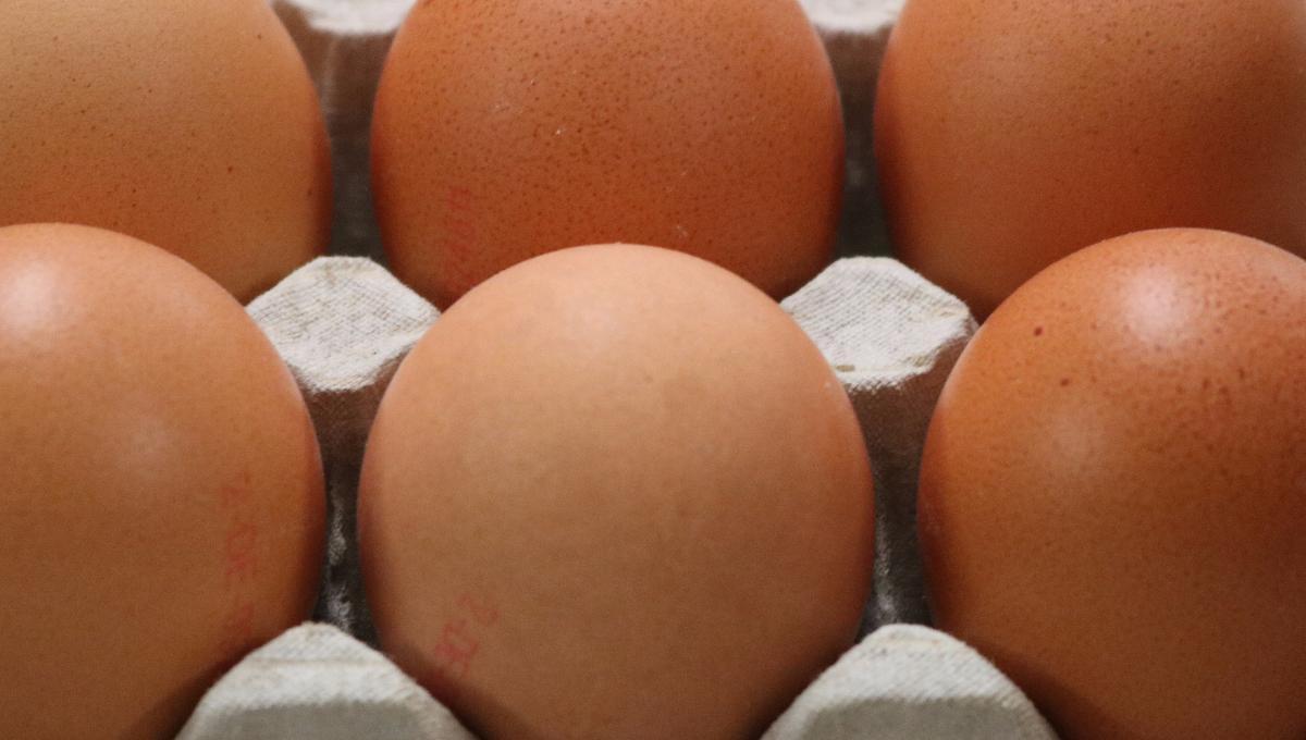 Strauss Eierhandel