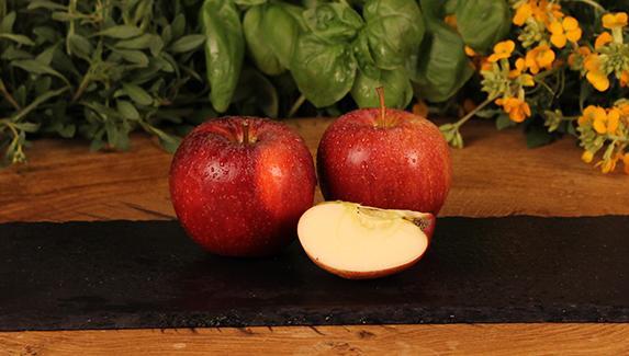 Äpfel Kl.1 1kg