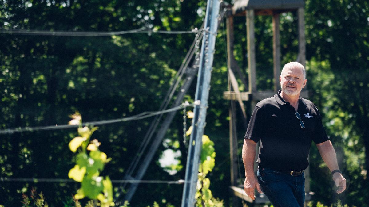 Weinbau Weizenberger