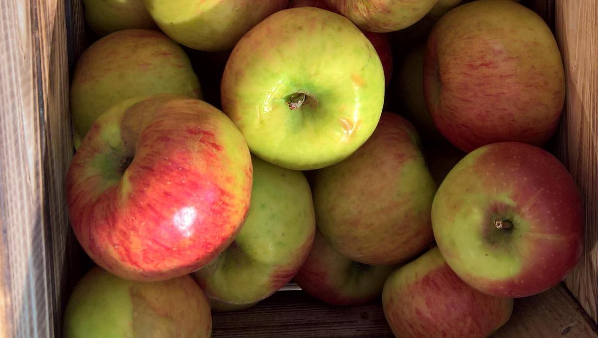 Apfel Topaz