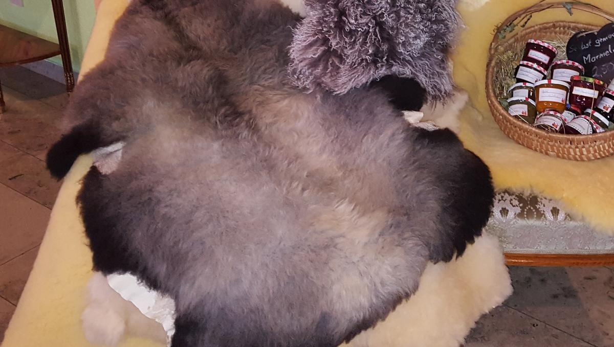 Lamm/SchafFelle meiner eigenen Schafe und Lämmer